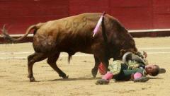 boga ve matador