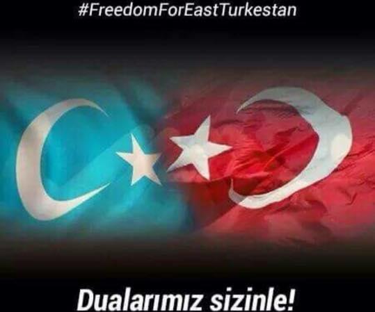 turk bayraklari