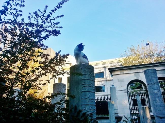 mezar tasi üzerinde kedi